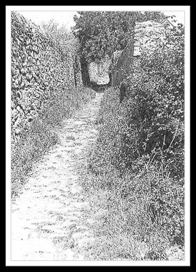 Camí de les Mines, de les Donzelles o de Sant Sever (2)