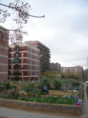 Horta de Porta (4)