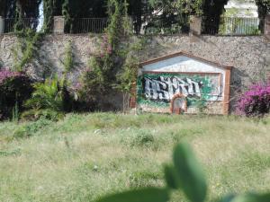 DSCN3919