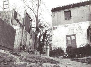 placeta de Casals, 1979